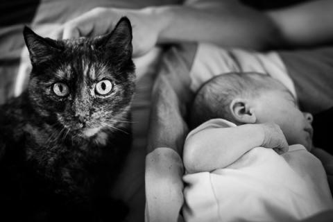 Baby Babybilder Leipzig Babybilder Sachsen Babyfotograf Neugeborenenshooting-10