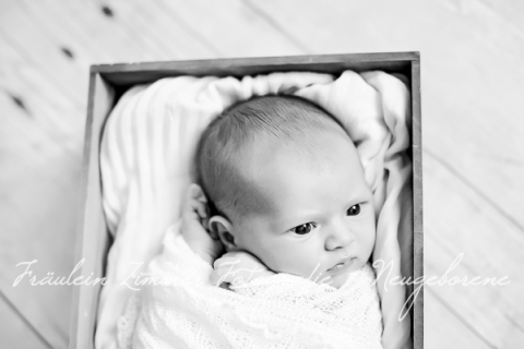 Neugeborenenfotograf_Neugeborenenfotos_Baby_Babyfotos_Babyfotograf Leipzig_Babybilder Leipzig_Babybilder Sachsen_Babyfotograf Sachsen_Homestory Leipzig_Fotograf Leipzig-2