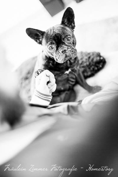 Neugeborenenfotograf_Neugeborenenfotos_Baby_Babyfotos_Babyfotograf Leipzig_Babybilder Leipzig_Babybilder Sachsen_Babyfotograf Sachsen_Homestory Leipzig_Fotograf Leipzig-6