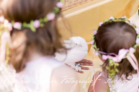Hochzeitsfotograf Leipzig-Fotograf Leipzig¬¬-Hochzeitsfoto Leipzig-Portraitfotos Leipzig-Hochzeit Sachsen-Hochzeit Leipzig-Heiraten Vineta-Heiraten_Heiraten in Leipzig45
