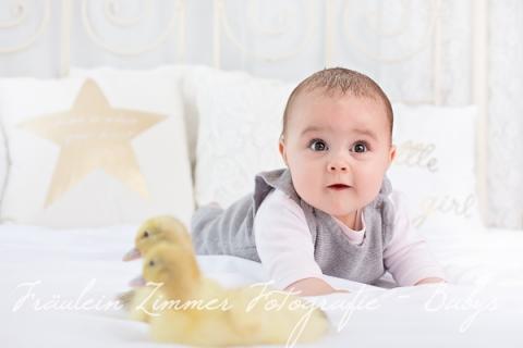 Baby_Babyfotograf Leipzig_Babybilder Leipzig_Babybilder Sachsen_Babyfotograf Sachsen_Homestory Leipzig_Fotograf Leipzig-3