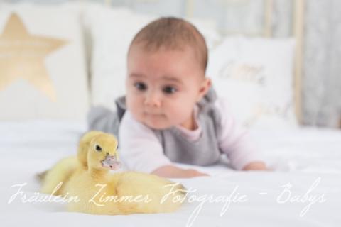 Baby_Babyfotograf Leipzig_Babybilder Leipzig_Babybilder Sachsen_Babyfotograf Sachsen_Homestory Leipzig_Fotograf Leipzig-4