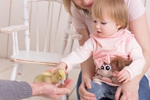 Baby_Babyfotograf Leipzig_Babybilder Leipzig_Babybilder Sachsen_Babyfotograf Sachsen_Homestory Leipzig_Fotograf Leipzig-16